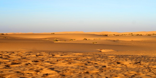 01-Wüste